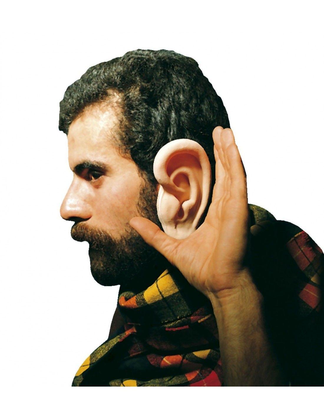 Aureolas Gigantes orejas gigantes